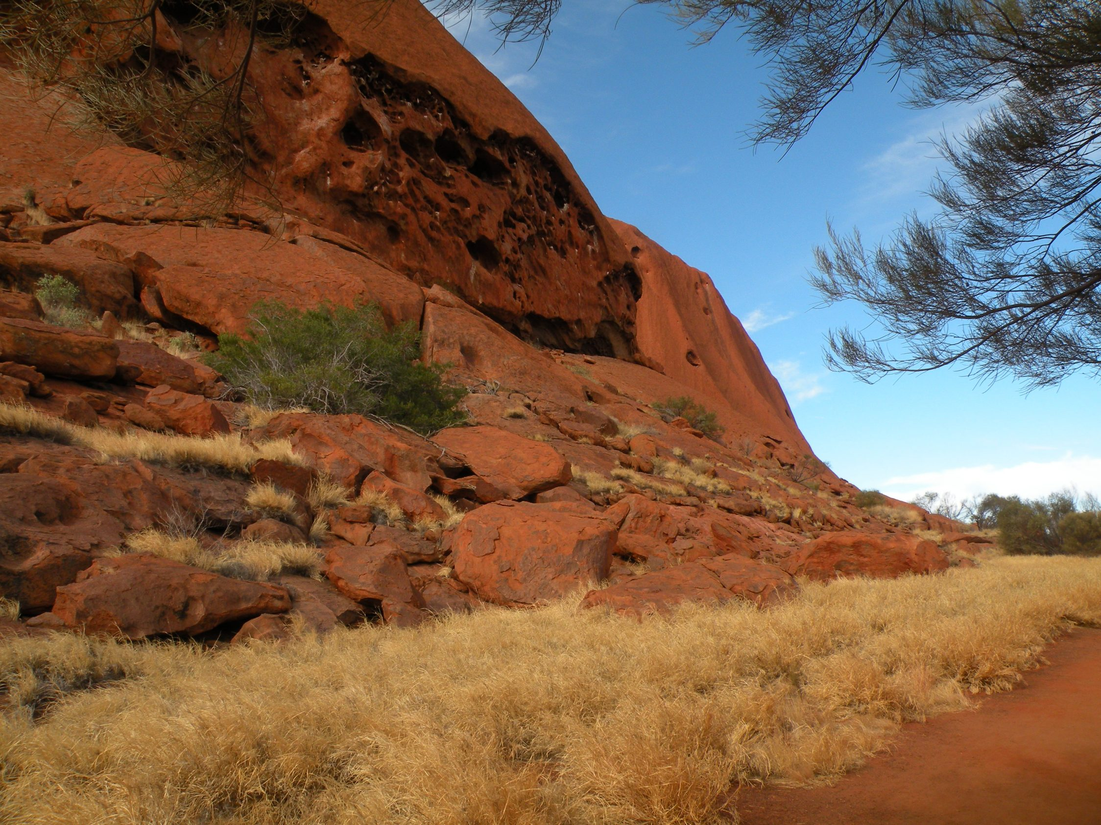 Uluru – Mala guided walk and Uluru base walk