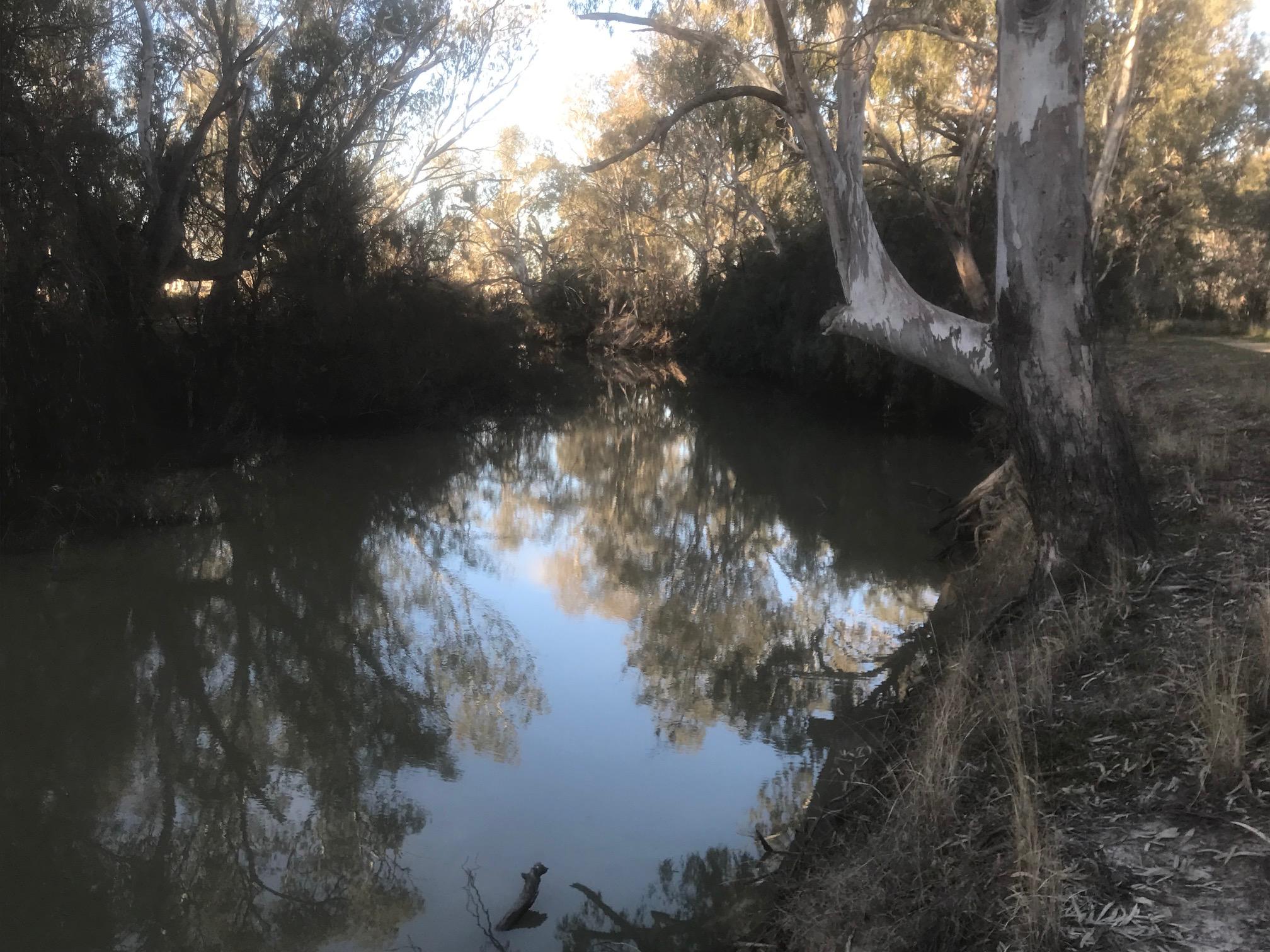 Queensland Caravanning Roadtrip